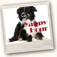 Yappy Hour at Zao Island This Sunday