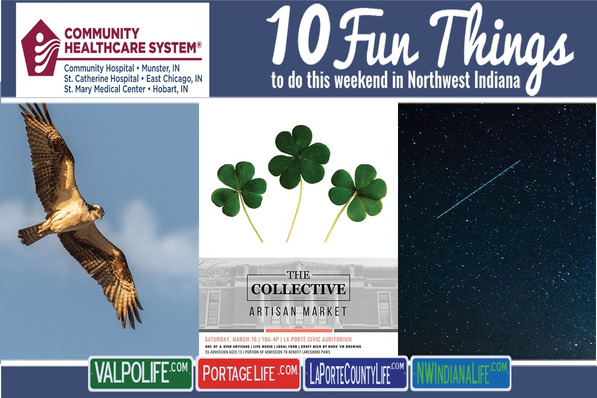 10 Fun Things to Do This Weekend in Northwest Indiana March 15th – 17th, 2019
